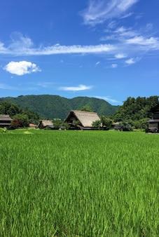 Дом гассё-дзукури, историческая деревня сиракаваго летом, япония