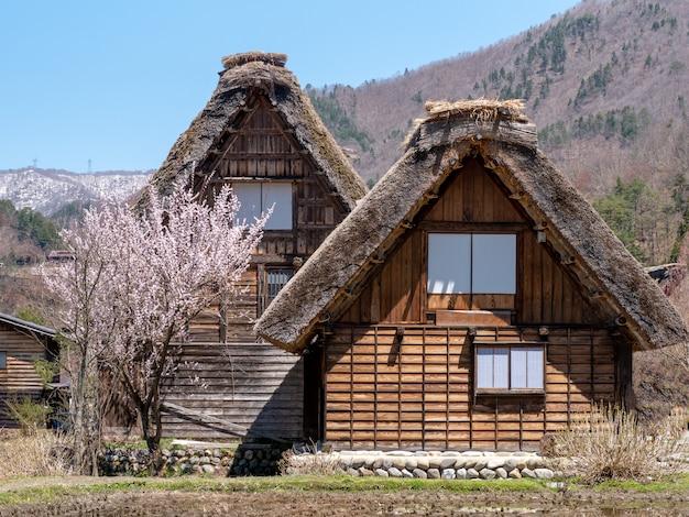 合掌造りの家、春の白川郷の歴史的な村、日本