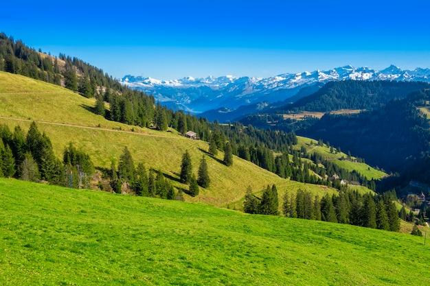 Красивая швейцарская гора летом