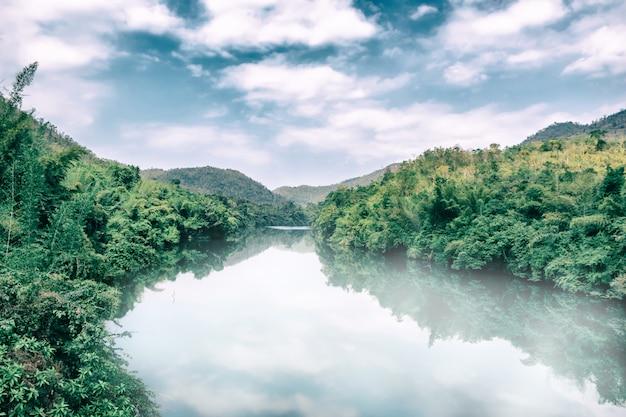 環境と熱帯雨林の川の霧