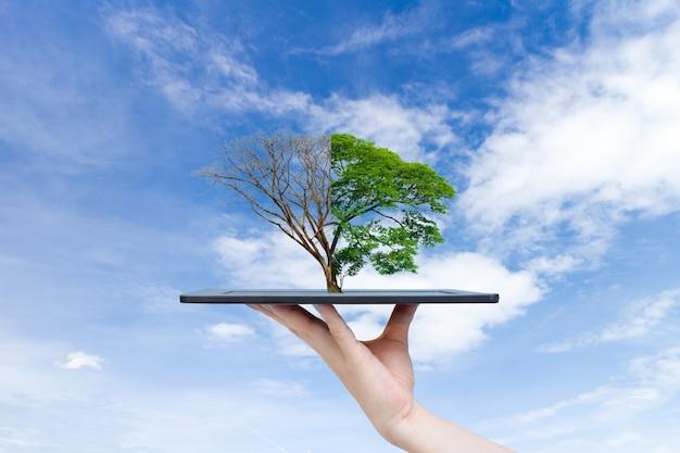 タブレットに大きな植物の木を保持しているリサイクル可能な環境人間の手