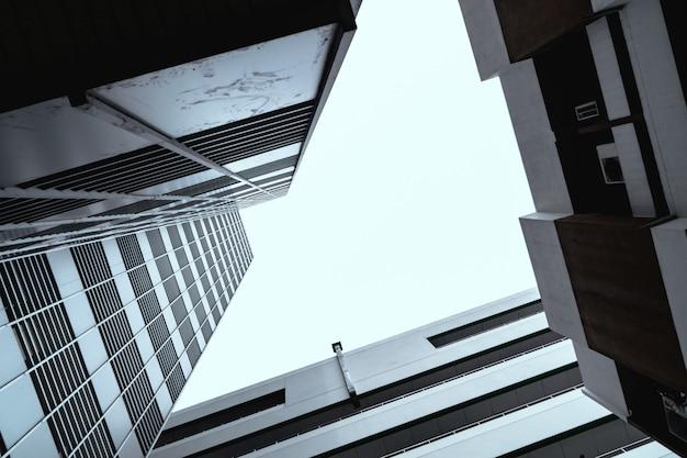 建物と背の高い空が上を見て