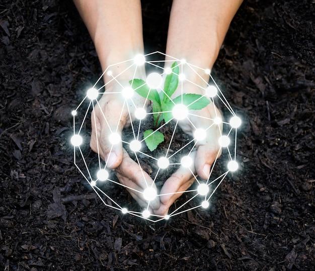 環境を守るために植樹をする人々世界の