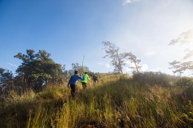 晴れた日に山でハイキングのグループ。ソフトフォーカス