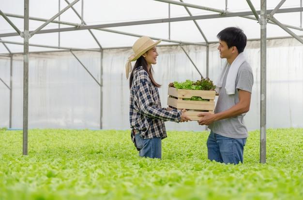 Молодой дружелюбный фермер пар усмехаясь и держа органический гидропонный свежий зеленый овощ производит деревянную коробку совместно в ферме питомника сада парника