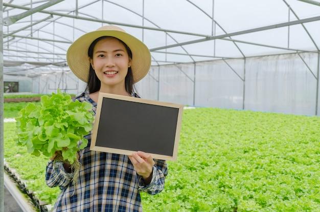 Азиатский молодой дружелюбный фермер женщины показывая пустое классн классный и держа гидропонный свежий салат