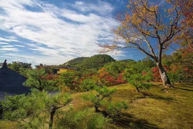 秋の金閣寺の眺め