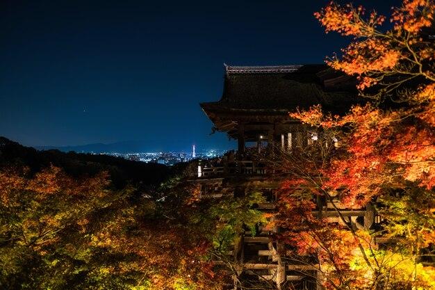 京都の清水寺での秋の光