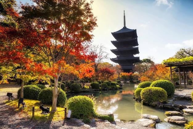 東寺のカラフルな秋