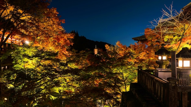 夜の秋に灯る清水寺、京都、日本