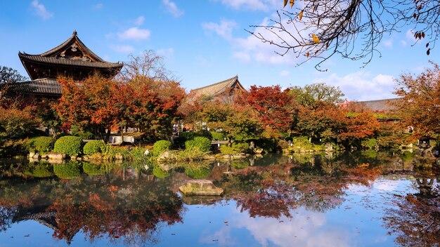 京都の東寺にある秋の庭と木の祠。