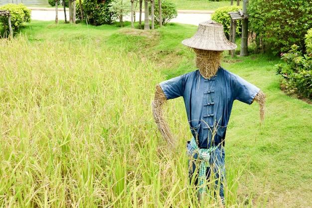 ヒューマノイドかかしは通常、古着を着て、野外に置かれます。
