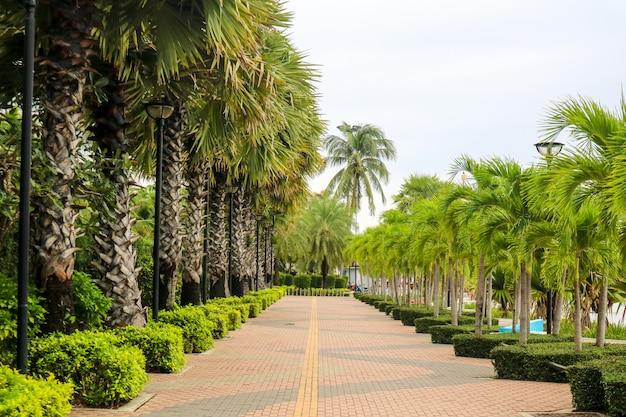 散歩、サイクリング、エクササイズ、日光浴、リラックスのための公共の場