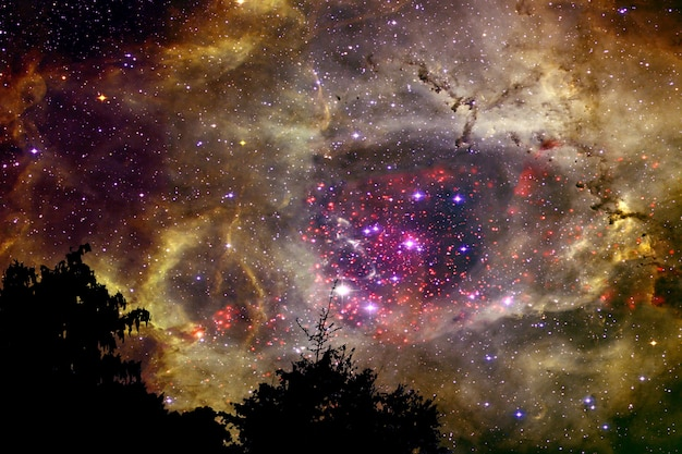 夜の雲空シルエット乾燥木に戻って金色銀河星雲をぼかし