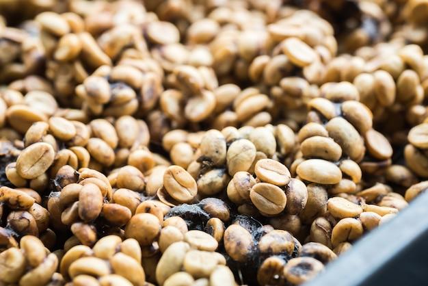 コピルワクコーヒー豆