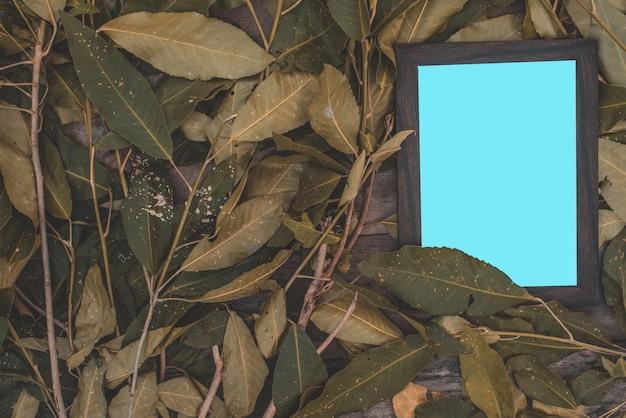 古い木の床に緑の葉