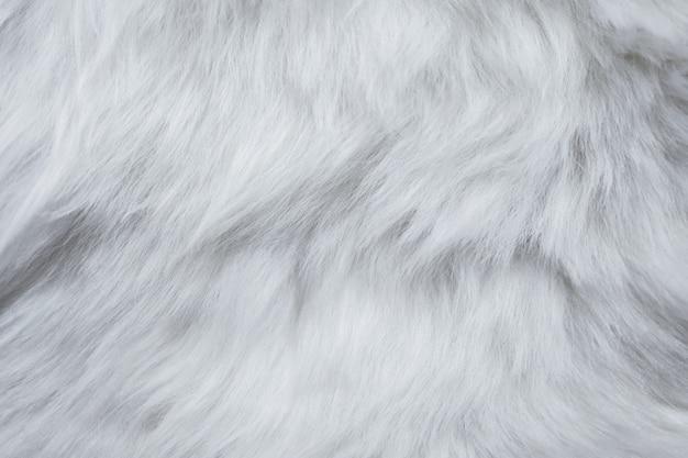 白い毛皮テクスチャのクローズアップ