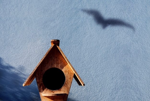 自由と脱出の概念。セメント壁面の鳥の陰影