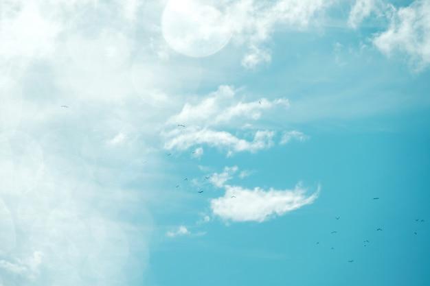 晴れた日に雲とともに青い空。付属の鳥のフライとフレアの照明