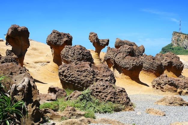 Форма грибов в геопарке йелиу, тайбэй, тайвань.
