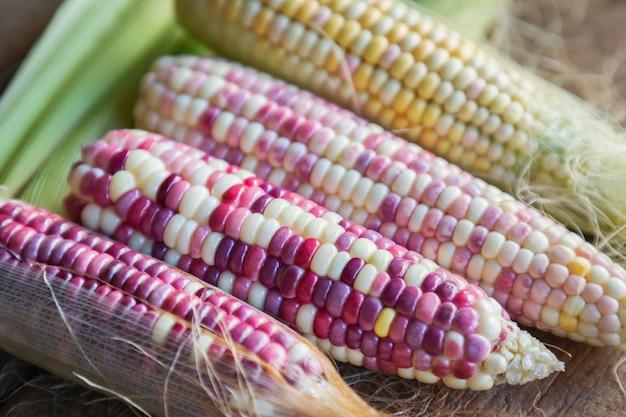 Красочные маленькие уши восковые мозоли с шелком, лист кукурузы и старый деревянный фон.