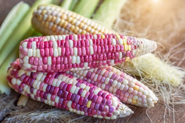 絹、トウモロコシの葉と古い木製の背景を持つカラフルな小さな耳ワックス状の穀物。