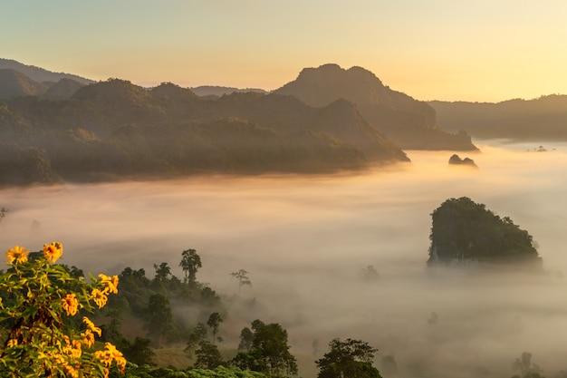 タイのフーランカ国立公園の山と花の景色