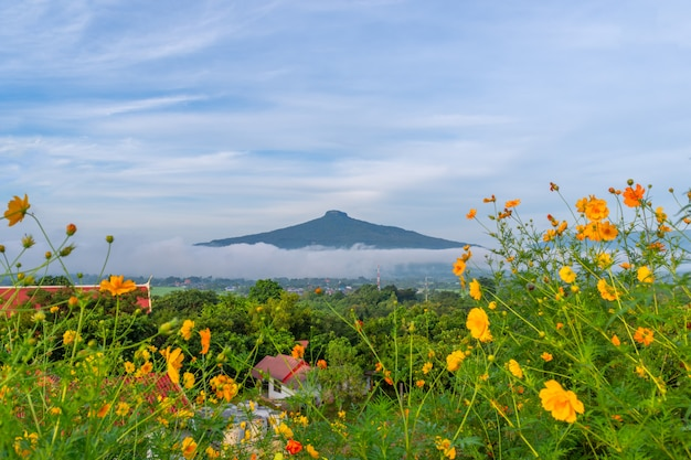 Красивый природный ландшафт для отдыха в пху луанг, провинция лей, таиланд