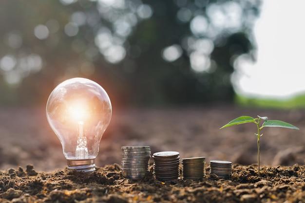 自然の夕日を背景に土の上の小さな木とお金のスタックと電球