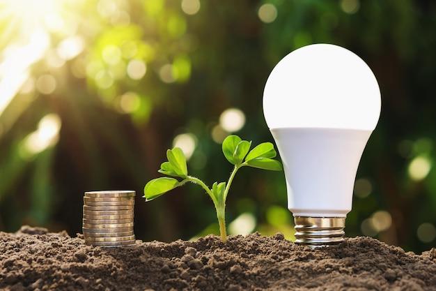 土の上の若い植物とお金のスタックと電球。省エネとお金の概念