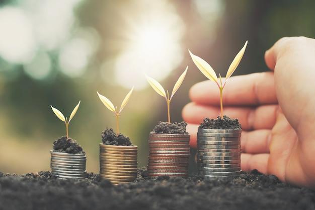 Рука экономия денег и выращивание молодых растений на монетах. концепция финансового учета