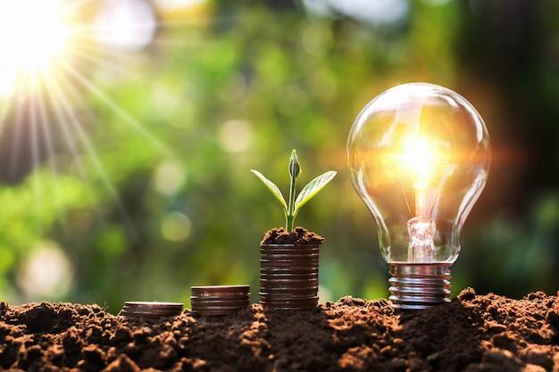 お金のスタックで成長している若い植物が付いている土の電球。金融とエネルギーの節約の概念