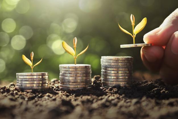 コインで成長している若い植物とお金を持っている手。
