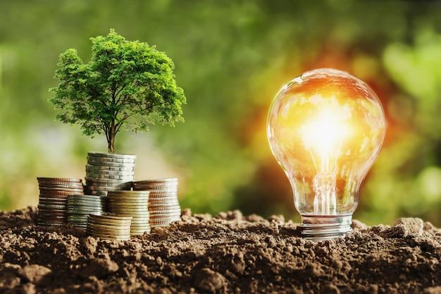 コインと電球で成長している木。エネルギーを節約するコンセプト