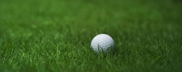 緑の芝生の背景にゴルフボール