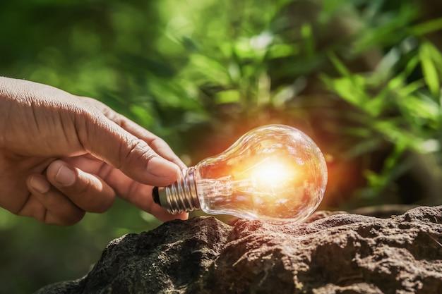 太陽の光と森の岩の上の電球を持っている手。