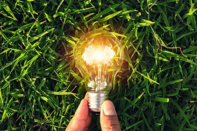 Рука держать лампочку на траве с закатом силы энергии природы
