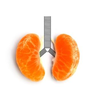 白い背景に概念の肺オレンジ