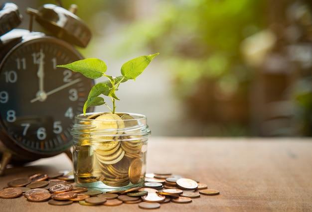 時間とお金、貯蓄コインとアラーム、ビジネスファイナンスの概念で成長する植物。