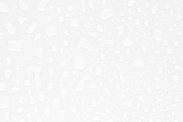 白い背景の上の抽象的な水滴