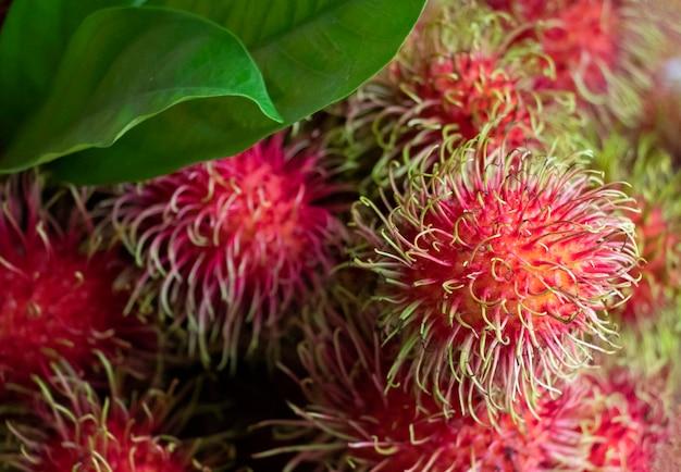 Красные рамбутаны свежие фрукты по сельскому хозяйству хорошее питание и вкус в летний сезон