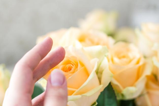 桃のバラの花束と手