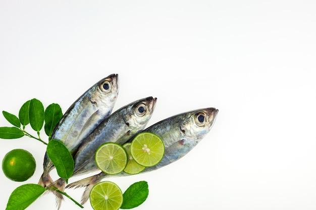 新鮮な魚とライムの分離