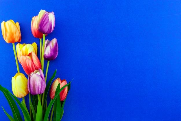 Весенние цветы из тюльпанов на цветном фоне