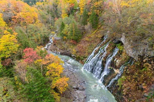 美しい白い滝と秋のカラフルな木