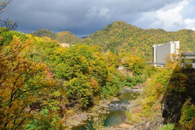 朝鮮時代の秋の彩り豊かな森、