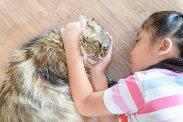 女の子は茶色のスコティッシュフォールド猫と遊んでいます