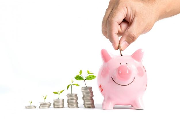 成長するお金-ピンクの貯金箱にコインを入れて実業家の手