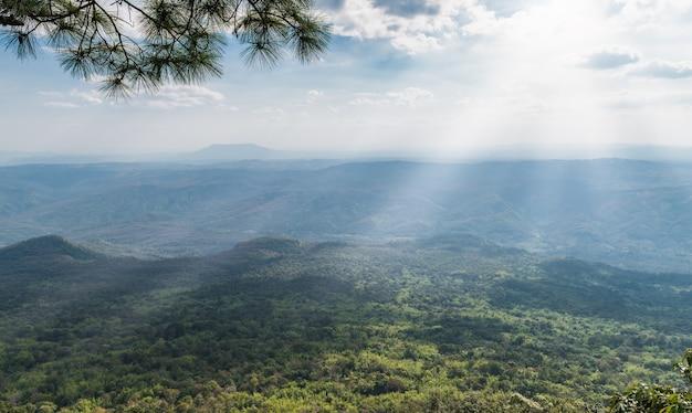 風景と森のある日光と空