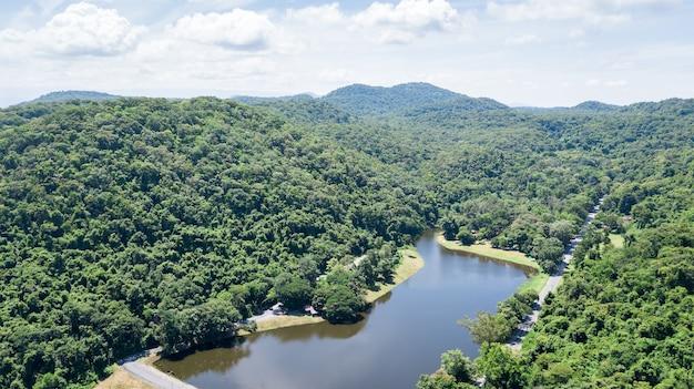 無人機からの空中写真:貯水池付き熱帯雨林